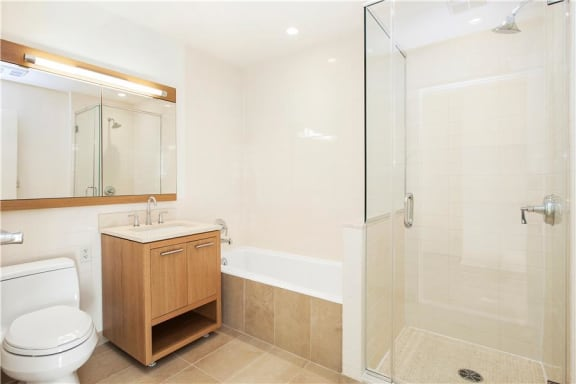 Oversized Soaking Tubs with Kohler Fittings at The Ashley, New York