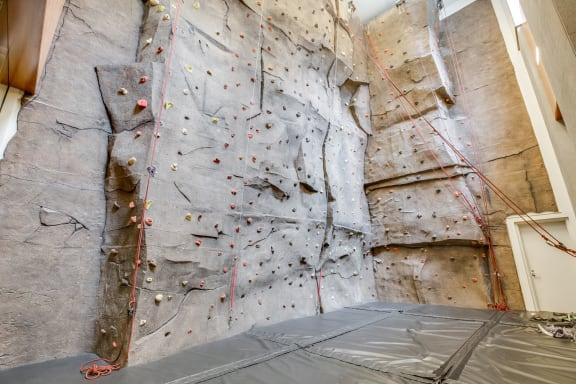 Rock climbing wall at The Ashley, New York, NY