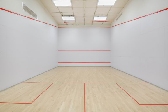 Sports court at The Ashley, New York, 10069