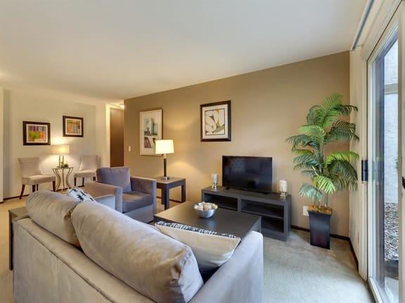 Lou Park Apartments in St. Louis Park, MN Living Room