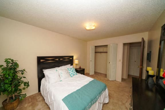 Plenty of Closet Space at Brookside Apartments in Springfield, MI