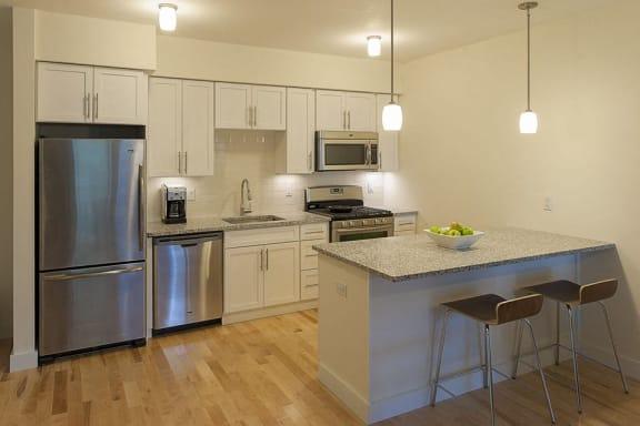 Modern Kitchen at 603 Concord, Cambridge, MA 02138