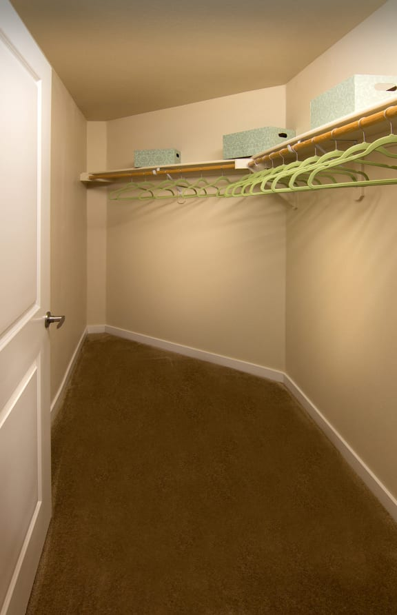 Large Closet at The Trails at Timberline, Fort Collins, CO