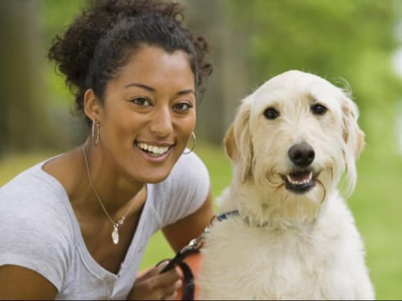 Pet friendly environment including large dogs at The Ridgewood by Windsor, Fairfax, VA 22030