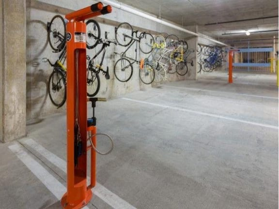 Bike Racks at Eleven by Windsor, Texas