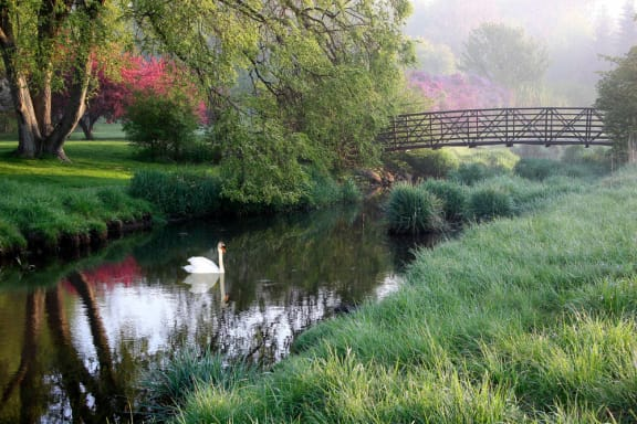 Beautiful Landscape with Lovely Wooded Views and Duck Pond at Candlewyck Apartments, Michigan