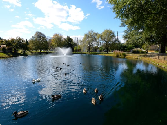 Beautiful Landscape with Lovely Wooded Views and Duck Pond at Woodsdale Apartments, Maryland, 21009