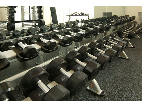 High Endurance Fitness Center at Cycle Apartments, Ft. Collins, CO, 80525