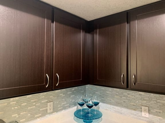 Contemporary Dark Wood Cabinets in Oro Valley
