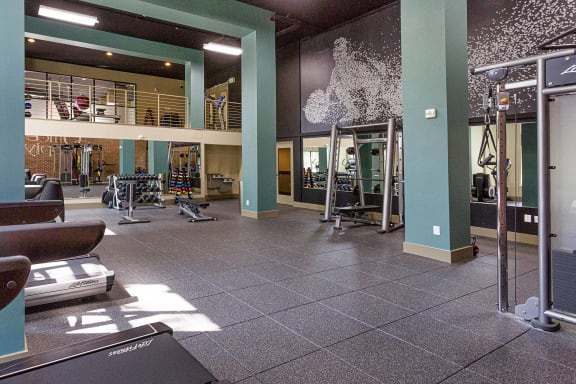 Multi-Level Workout Zones at 712 Tucker, Raleigh, 27603