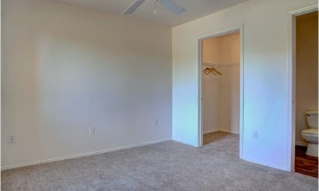 Plush Carpeting at The Colony Apartments, Arizona, 85122