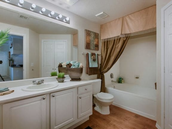 Stonebridge Ranch Apartment Homes for Rent in Chandler, AZ - Bathroom