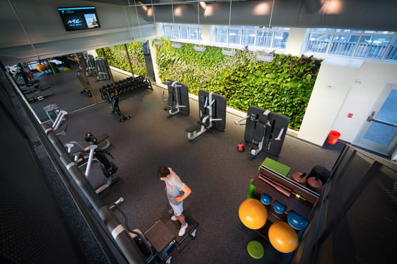 Fitness Center, apartments in Pittsburgh, Pennsylvania 15206
