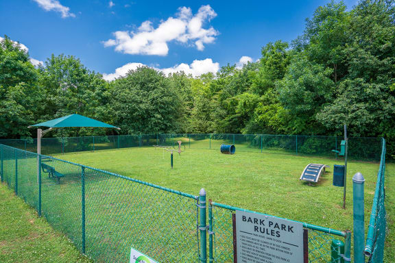 On-Premise Dog Park with Play Equipment