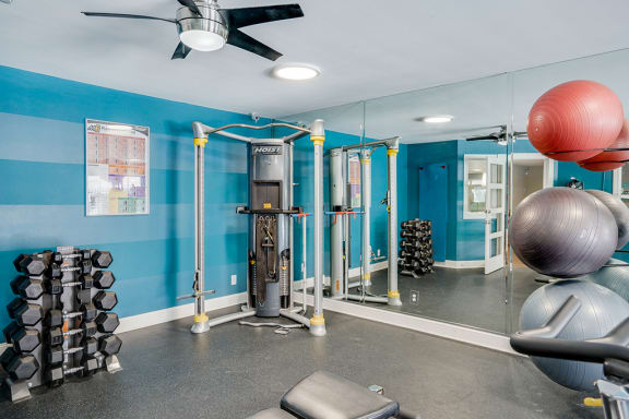 Weight Equipment in the Fitness Center