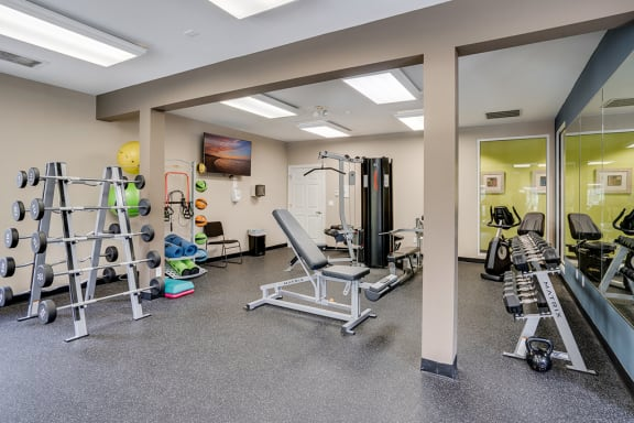 Large Free Weight Area at the Fitness Center
