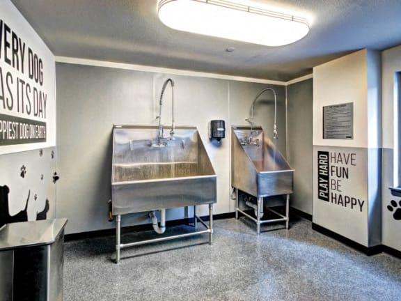 Dog Wash and Dog Run at Liv Apartments, Washington, 98007
