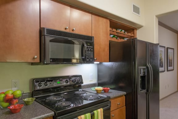 Black Appliance Package at Villas at Stone Oak Ranch, Austin, 78727