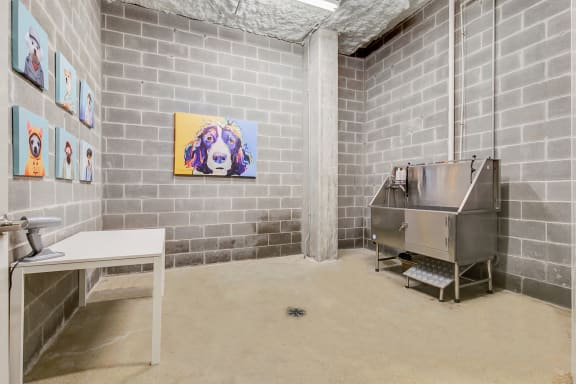 uptown dallas apartments with a dog wash