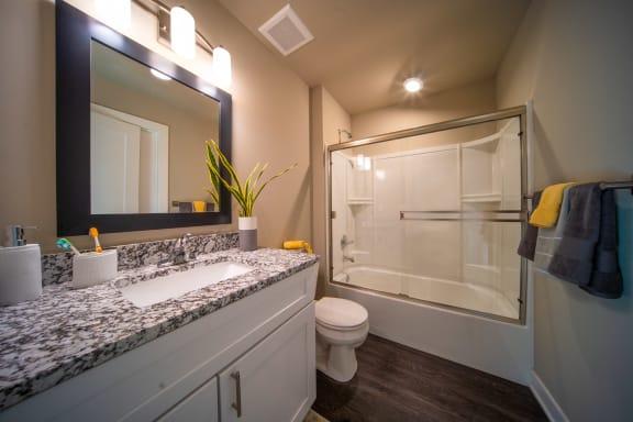 Bathroom with granite counters, vinyl flooring and new vanity