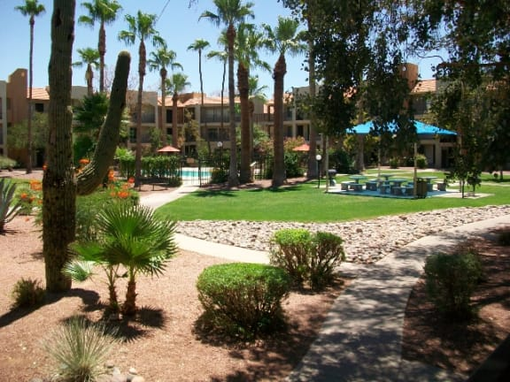 Landscaping at Casa Bella Apartments in Tucson, AZ