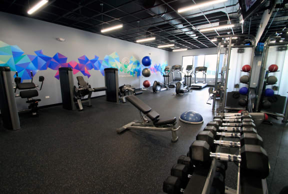 State-of-the-Art Fitness Center at The Clayson, Palatine, IL, 60067