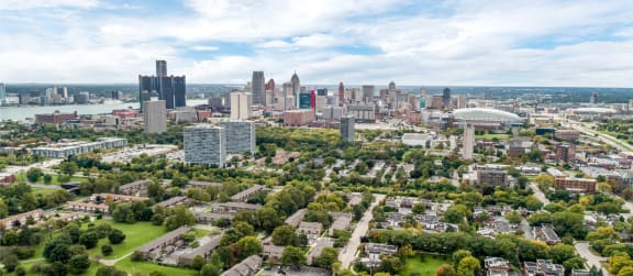 view of Ford Field Detroit from The Village of Hyde Park