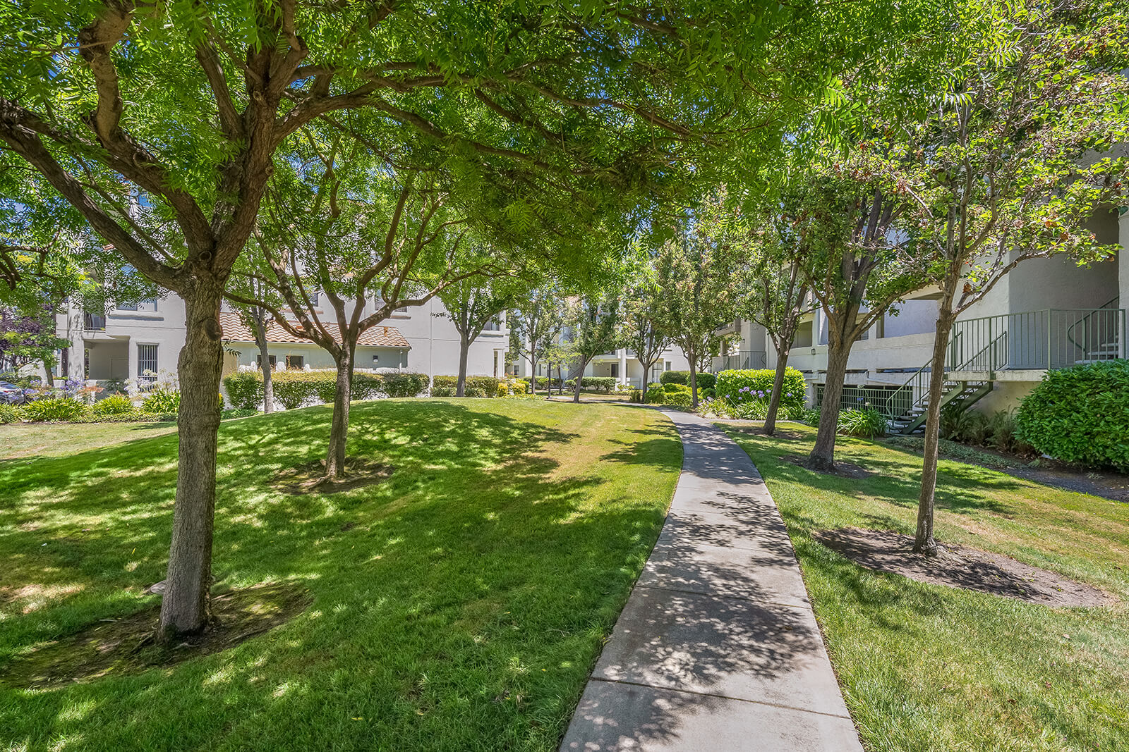 Meticulous Landscaping at Mission Pointe by Windsor, Sunnyvale, 94089