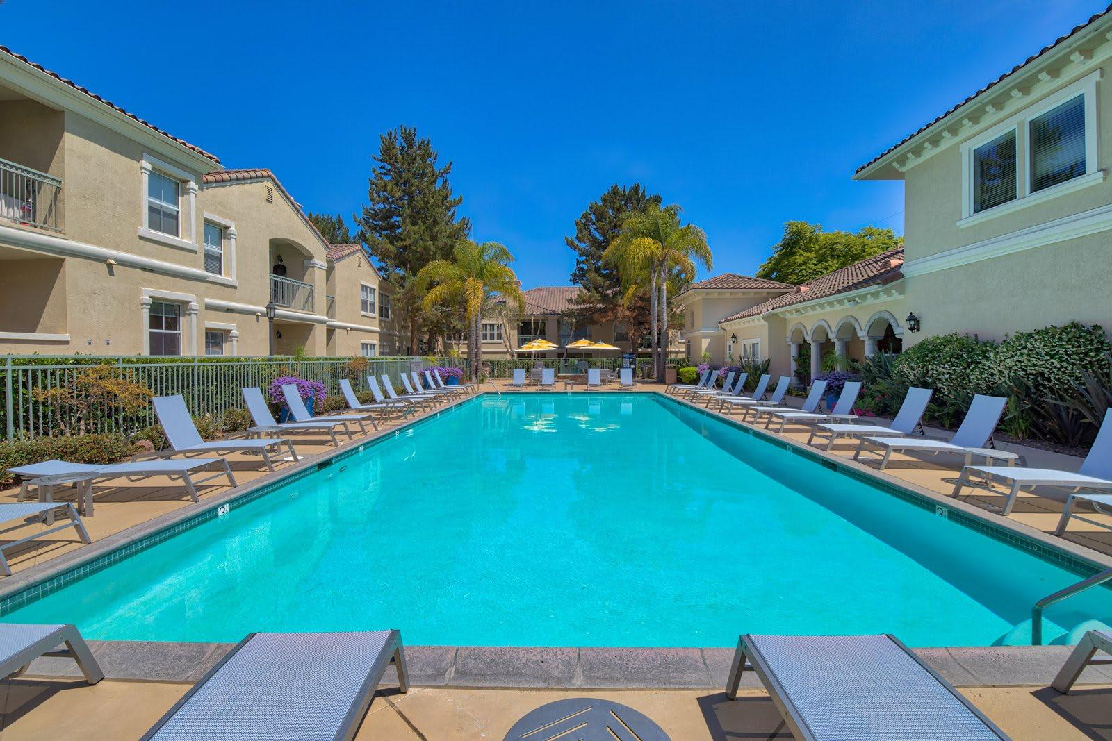 Resort-Style Pool at Windsor at Aviara, Carlsbad, 92011