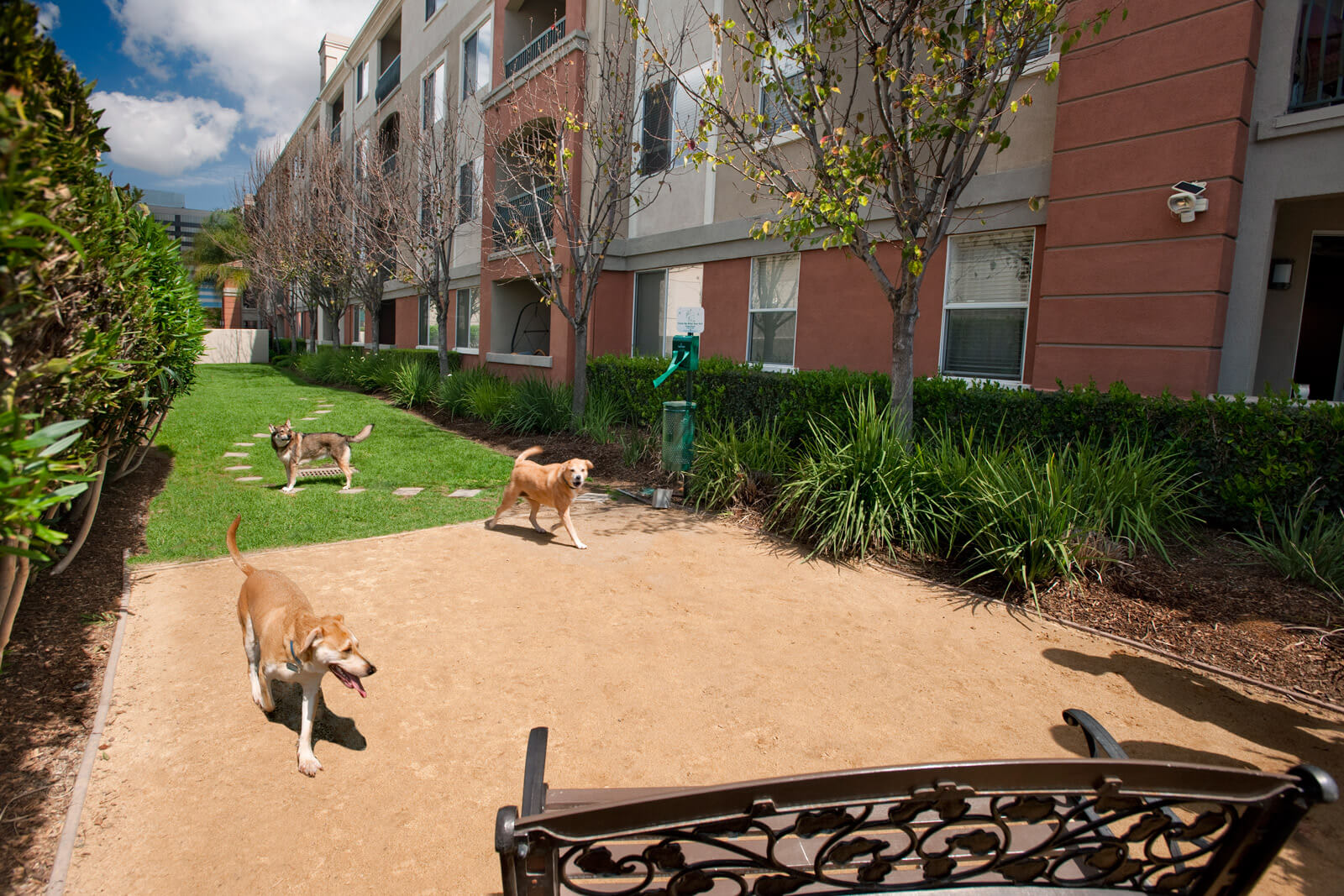 Pet-Friendly Community with Enclosed Dog Run at Windsor at Main Place, Orange, 92868