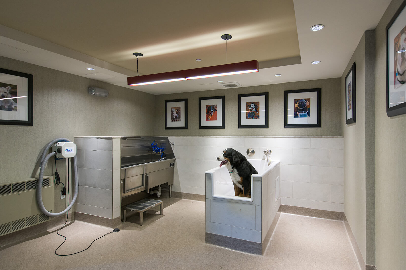 Dog Washing Station at Windsor at Cambridge Park, Cambridge, MA