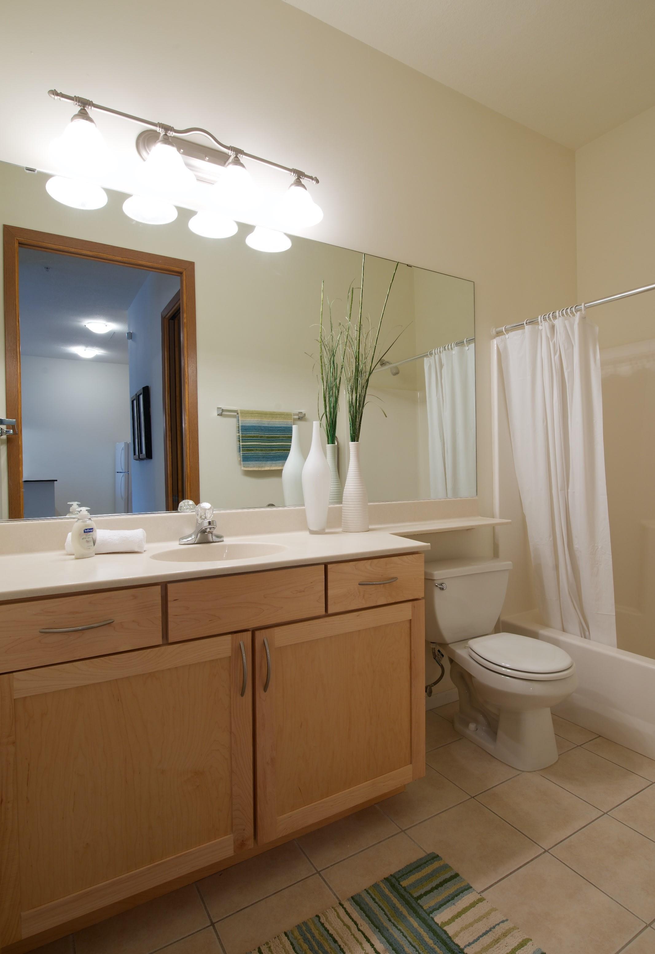 Mears Park Place Apartments in Saint Paul, MN Bathroom