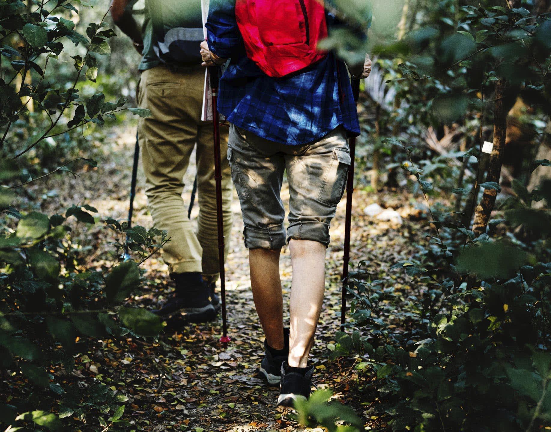 Access to 6.2 mile Braid Archer Trail