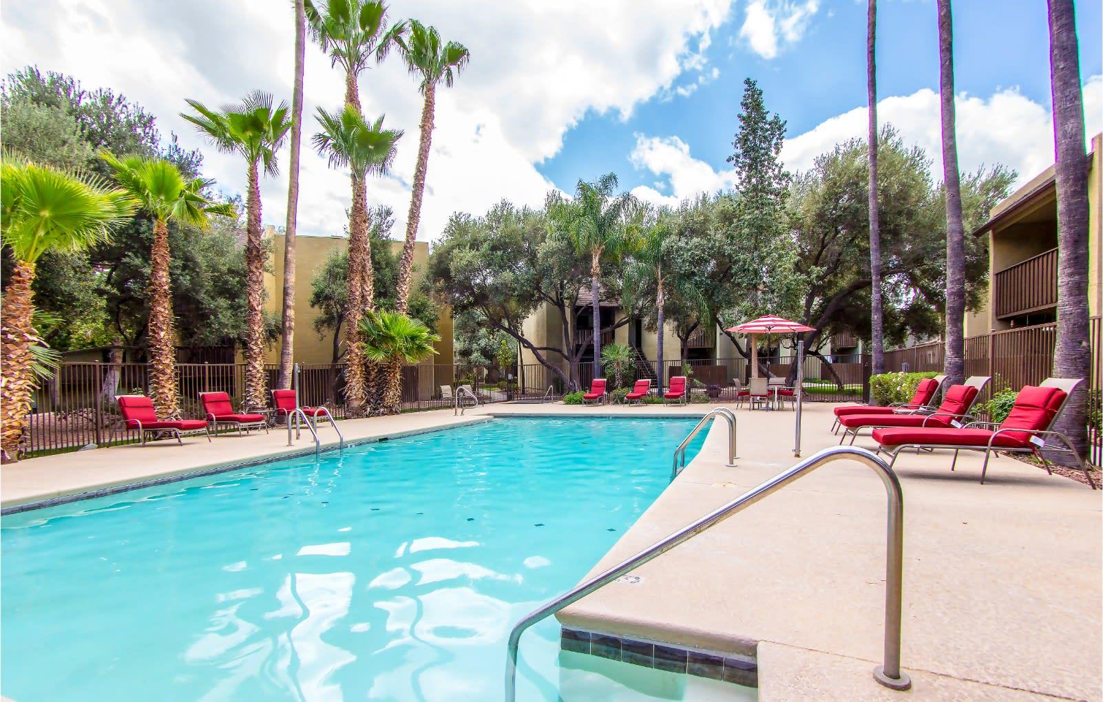 Pool & pool patio at River Oaks Apartments in Tucson, AZ