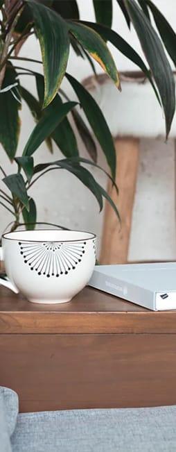 Mug resting on brown table. Green plant behind the mug and table