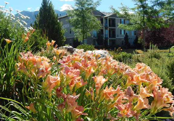 Beautiful Garden at Falls at Riverwoods Apartments & Townhomes, Logan, UT, 84321