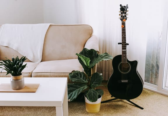 Couch with black guitar and plants