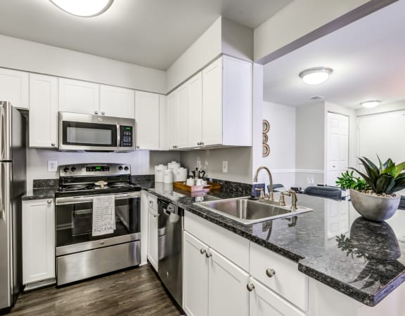Granite Countertop Kitchen at Waterside at Reston, Reston, 20194