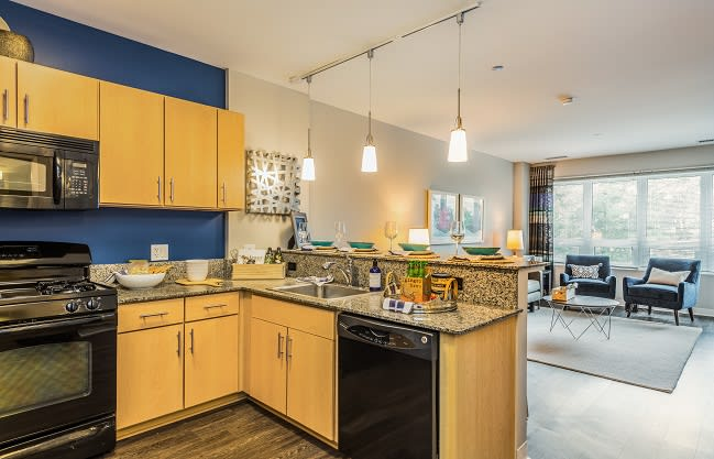 The Morgan At Loyola Station Apartments In Chicago Il Finding the right apartment floor plan to call home is the next step in discovering luxury living in the adams morgan neighborhood of nw washington, dc! the morgan at loyola station