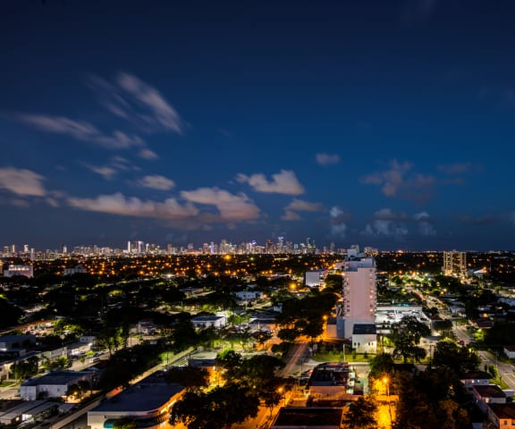 Miami Views