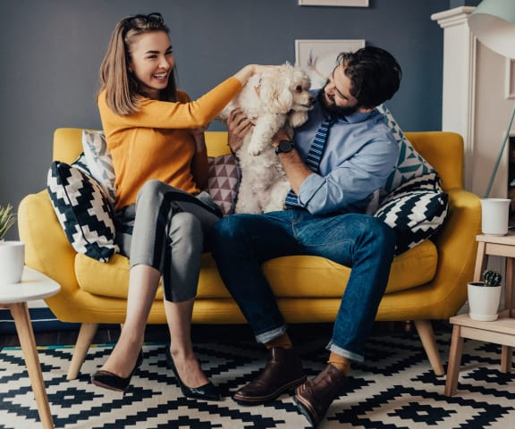stock image- couple with dog in living room