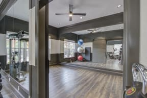 Fitness center with weights and medicine ball