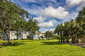Lush Green Area with Palm Trees and Pond in the Isles of Gateway Apartment Community