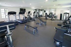 Brand new fitness room, lifefitness, spacious, roomy