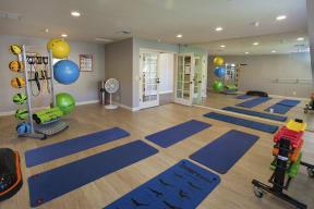 movement Studio, yoga, pilates, stretching, barr