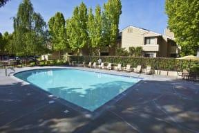 great swimming pool, green landscape, fun in the sun