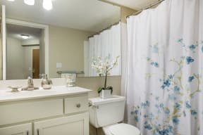Galtier Towers Apartments in Lowertown, St. Paul, MN Luxurious Bathroom