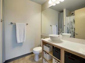 Lowertown Lofts Apartments in St. Paul, MN Bathroom Storage
