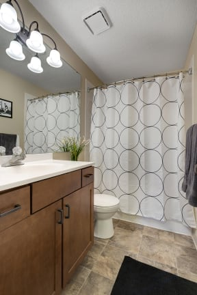 Regency Woods Apartments in Minnetonka, MN Bathroom