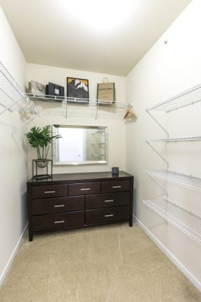 Master Closet with Framed Mirror and Storage Space at Aventura at Forest Park, St. Louis, 63110